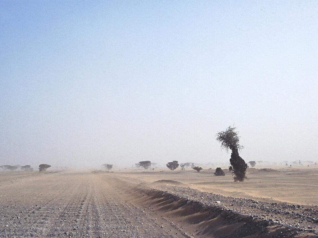 Wadi Halfayn