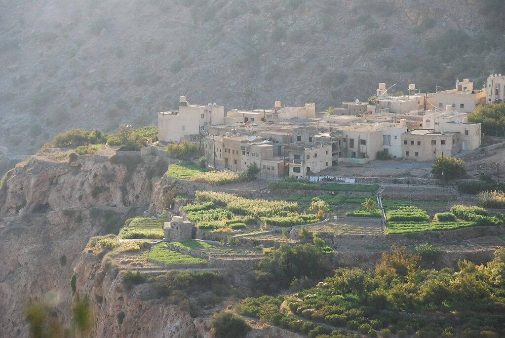 Djabal Akhdar Terrassenfelder / Jebel Akhdar terrace fields