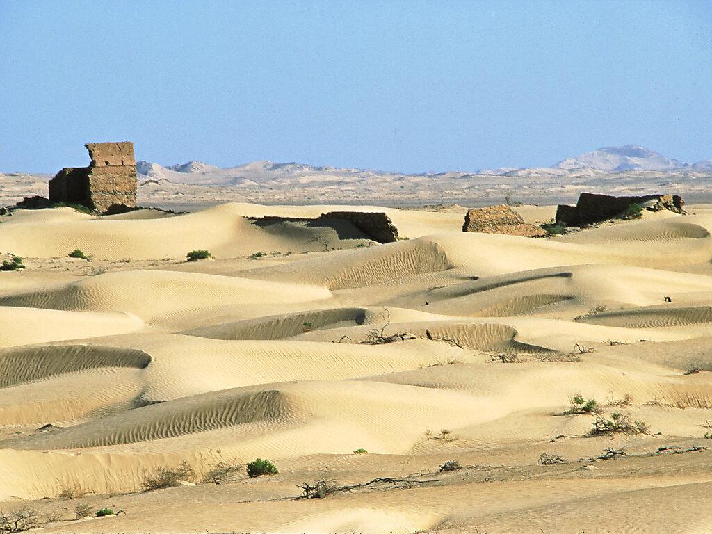 Ramlat al Wahiba / Ar Rimal ash Sharkiyya / Wad Batha / Ruine