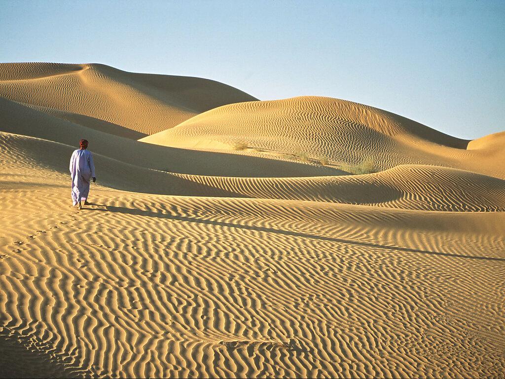 Sandwüsten / Deserts