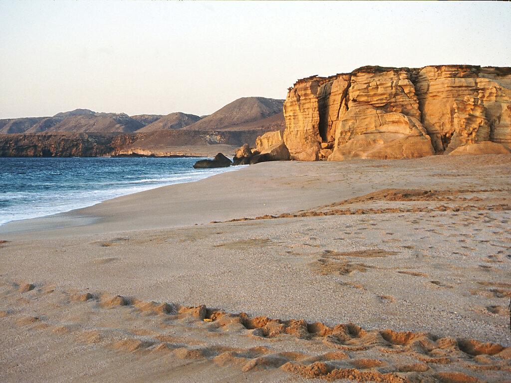 Ras Al Dschinz Schildkrötenspuren / Ras Al Jinz turtle tracks