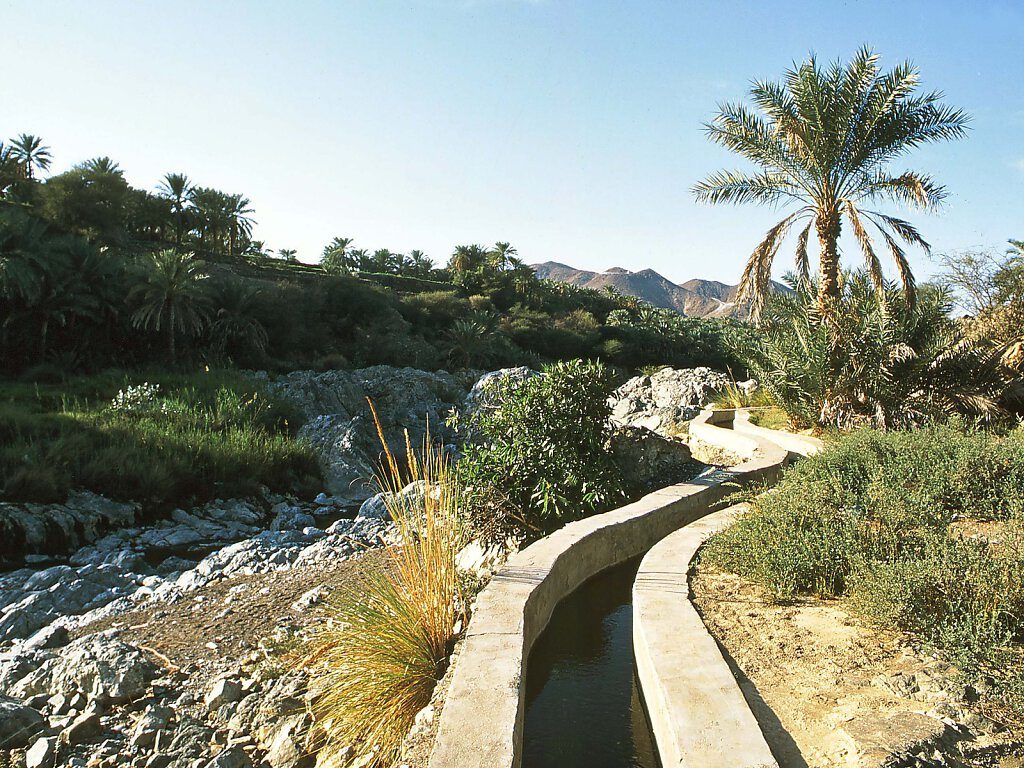 Wadi Al Hawqayn / Wadi Al Hoquain