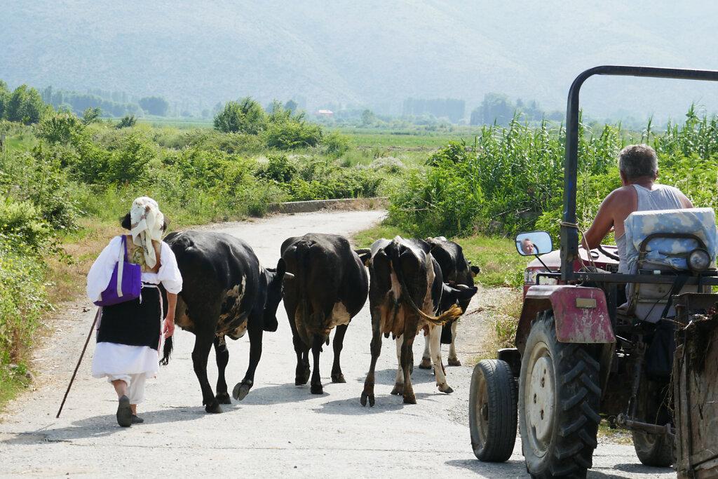Albanien Land und Leute / cross-country